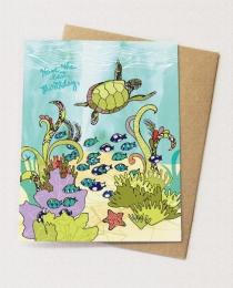 BD37 Turtle