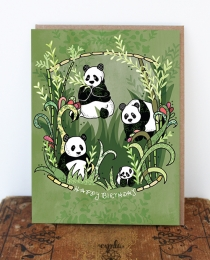 BD45 Pandas